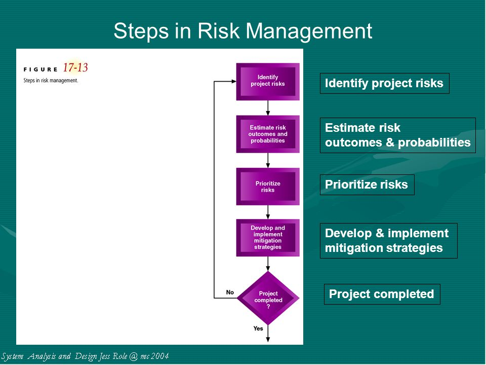 Steps in Risk Management