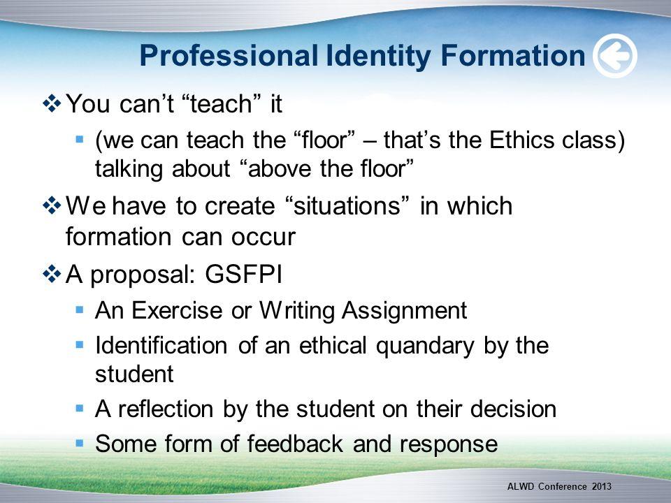 Professional Identity Formation