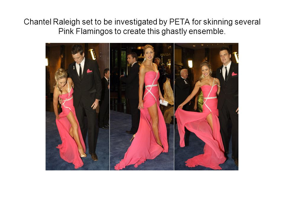 Chantel Raleigh set to be investigated by PETA for skinning several Pink Flamingos to create this ghastly ensemble.
