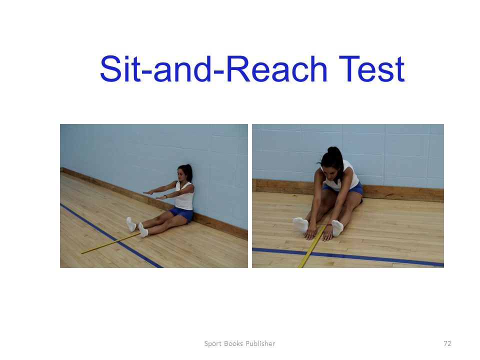 Sit-and-Reach Test Sport Books Publisher