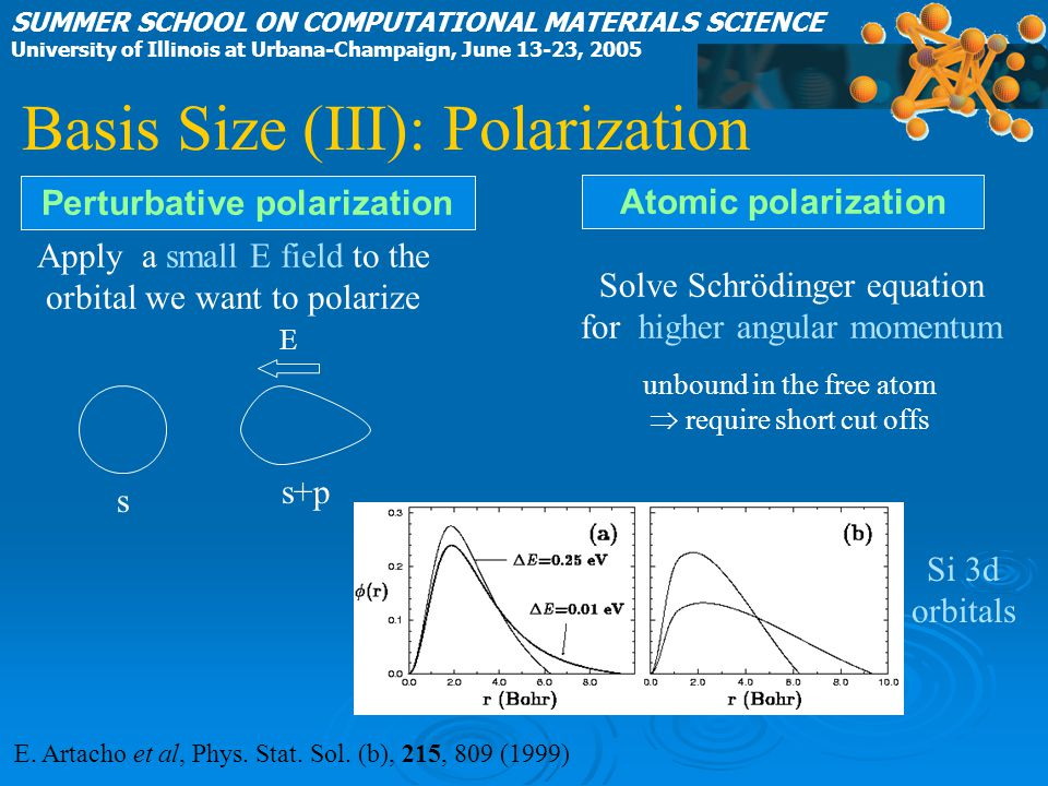 Basis Size (III): Polarization