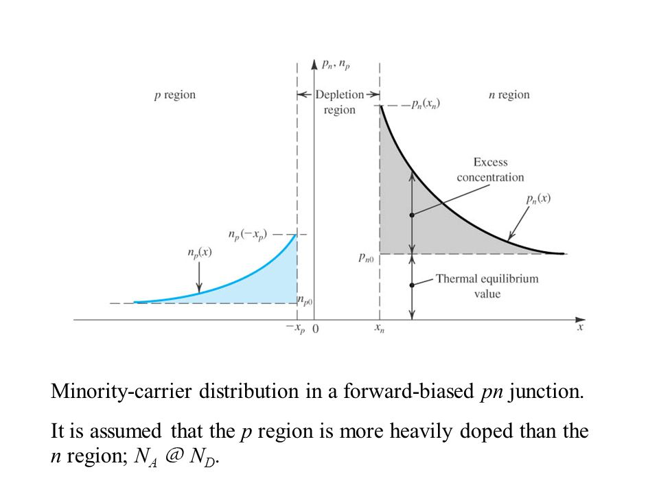Minority-carrier distribution in a forward-biased pn junction.