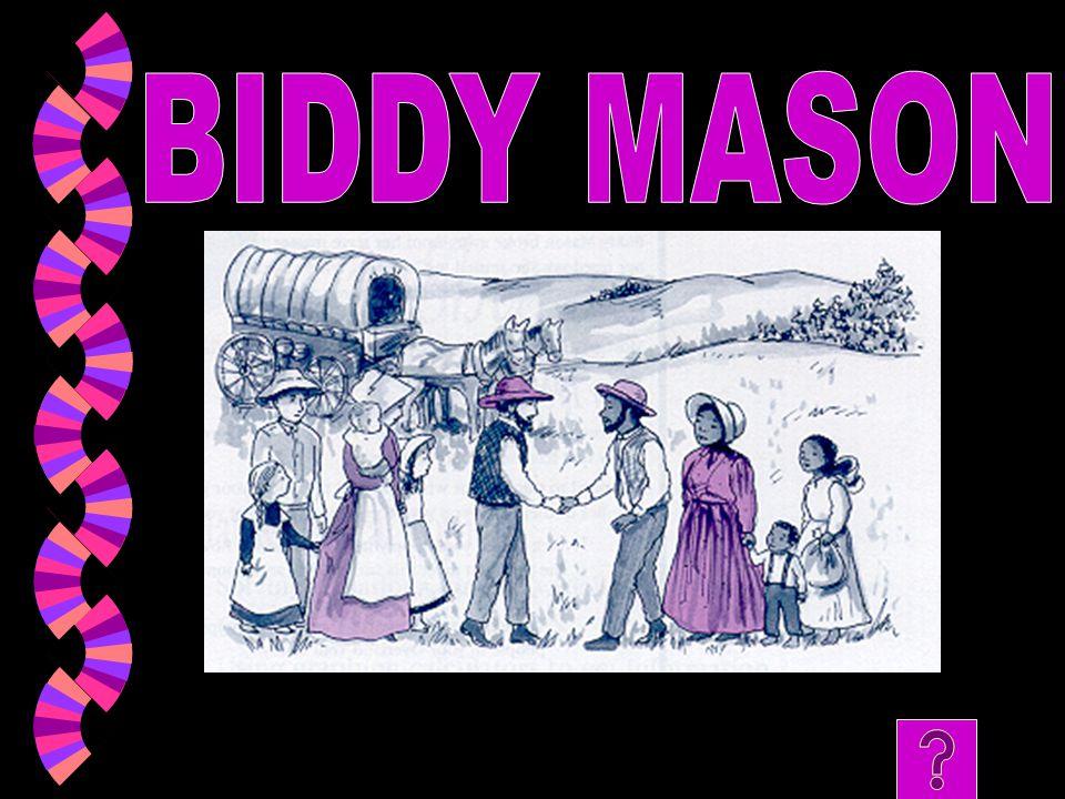 BIDDY MASON