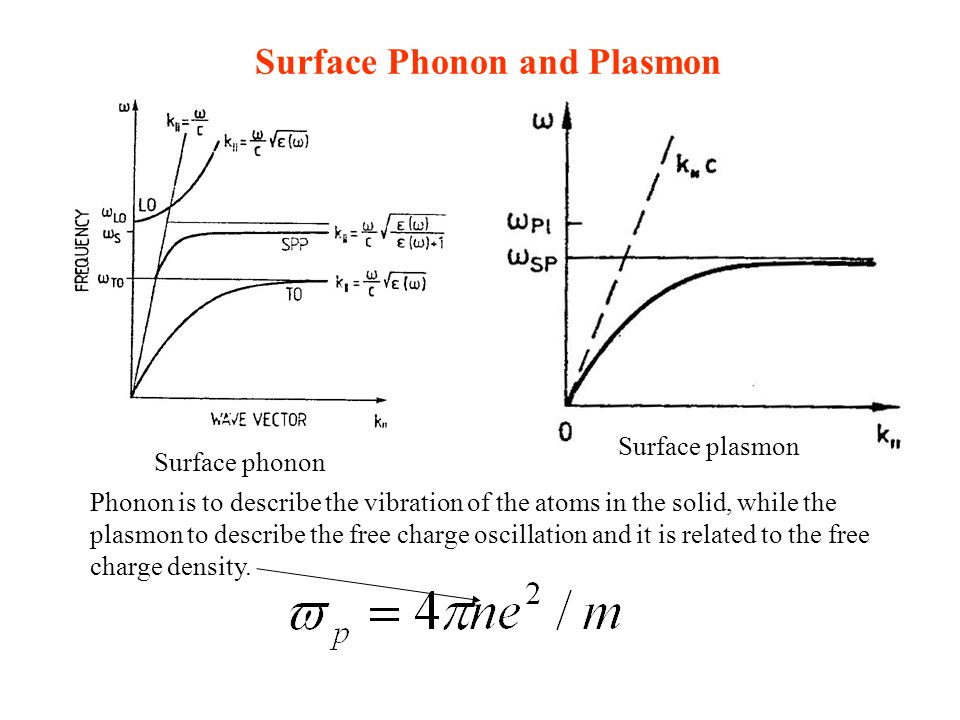 Surface Phonon and Plasmon