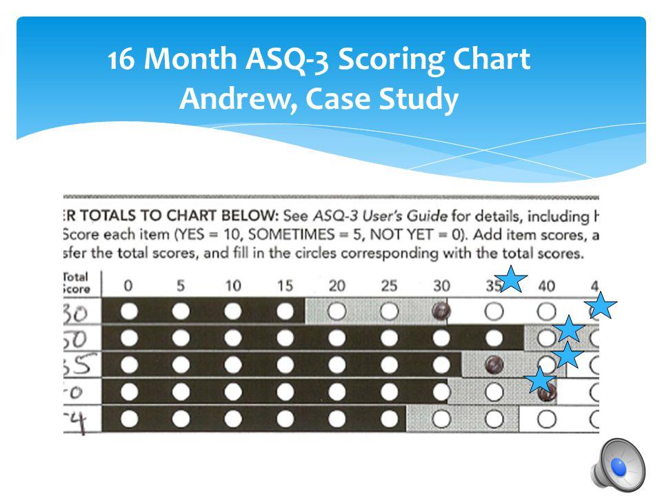 16 Month ASQ-3 Scoring Chart Andrew, Case Study