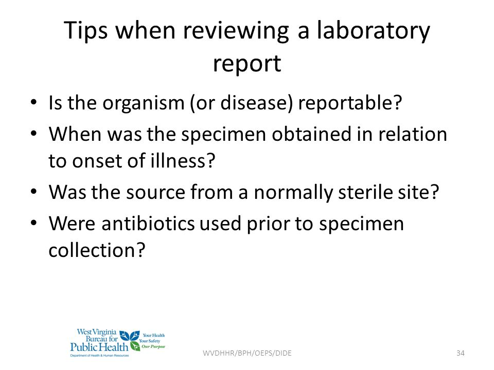Tips when reviewing a laboratory report
