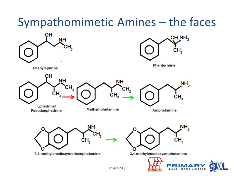 Sympathomimetic Amines – the faces