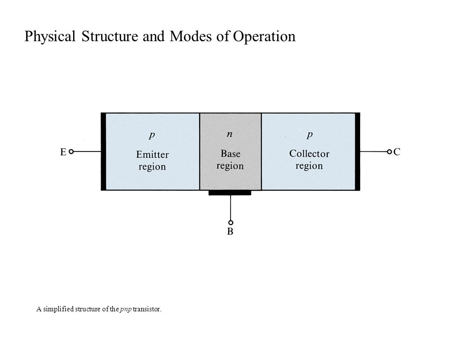 Physical Structure and Modes of Operation