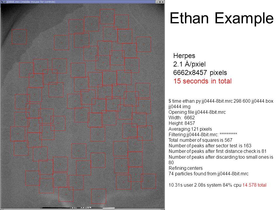 Ethan Example Herpes 2.1 Å/pxiel 6662x8457 pixels 15 seconds in total