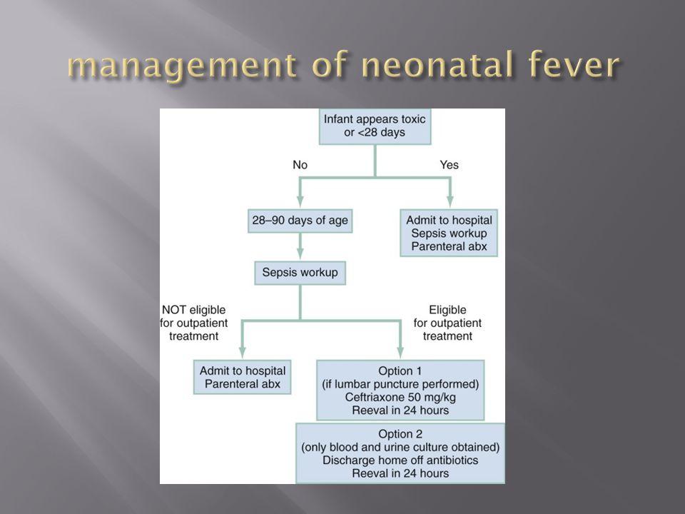 management of neonatal fever
