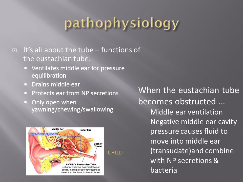 pathophysiology When the eustachian tube becomes obstructed …