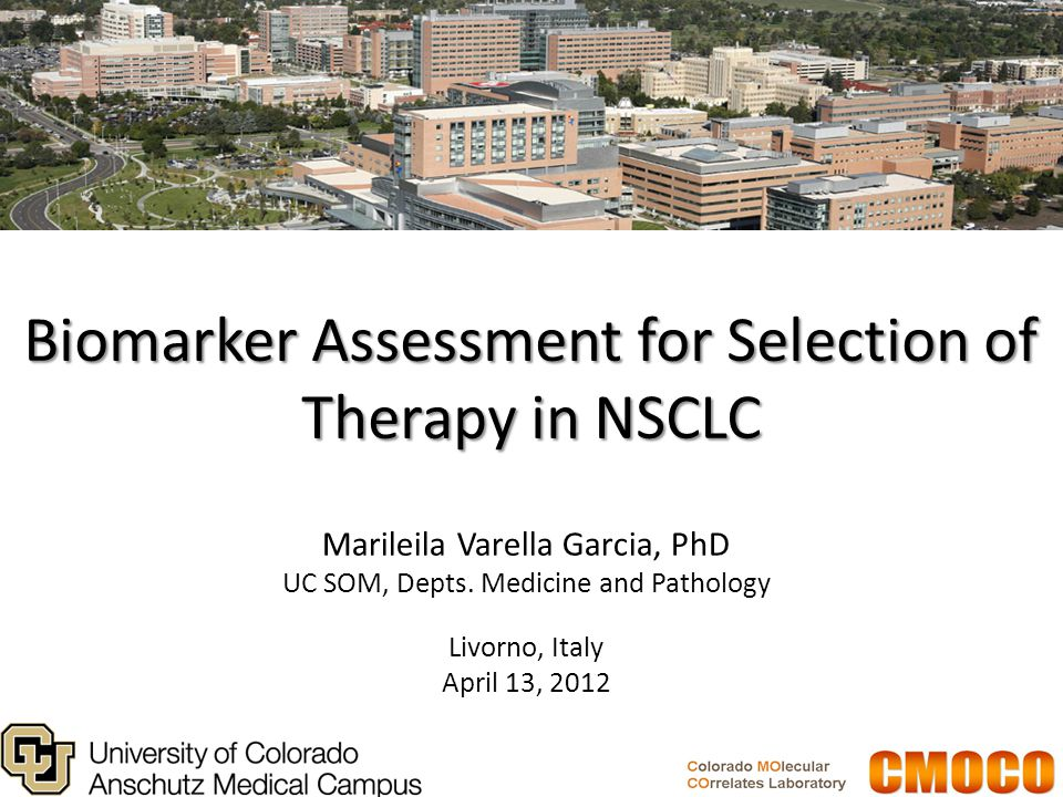 Biomarker Assessment for Selection of Therapy in NSCLC