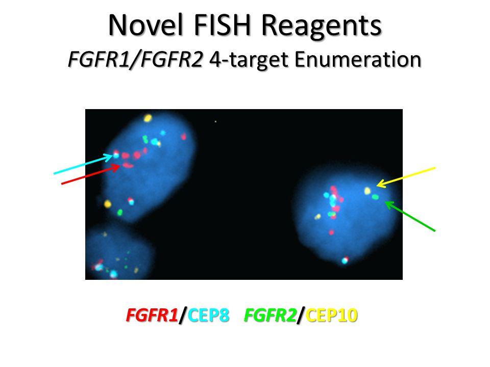 FGFR1/FGFR2 4-target Enumeration