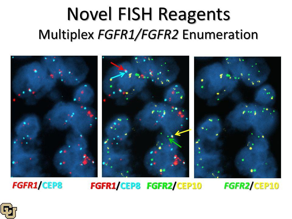 Multiplex FGFR1/FGFR2 Enumeration