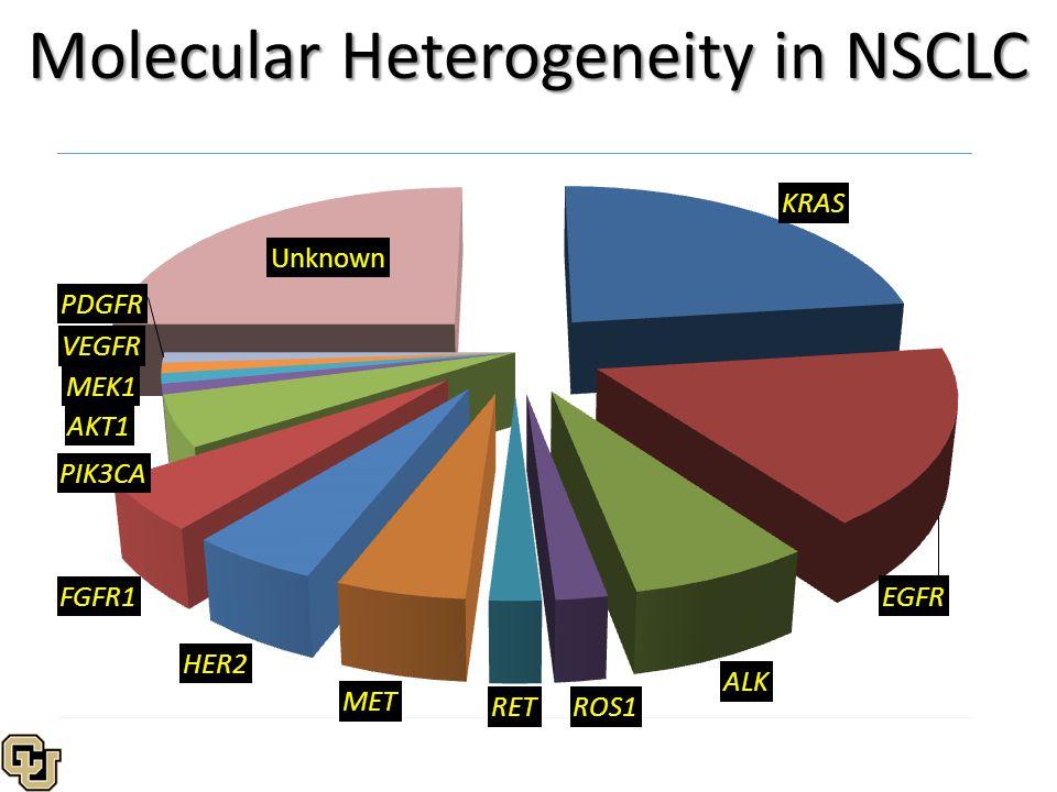 Molecular Heterogeneity in NSCLC