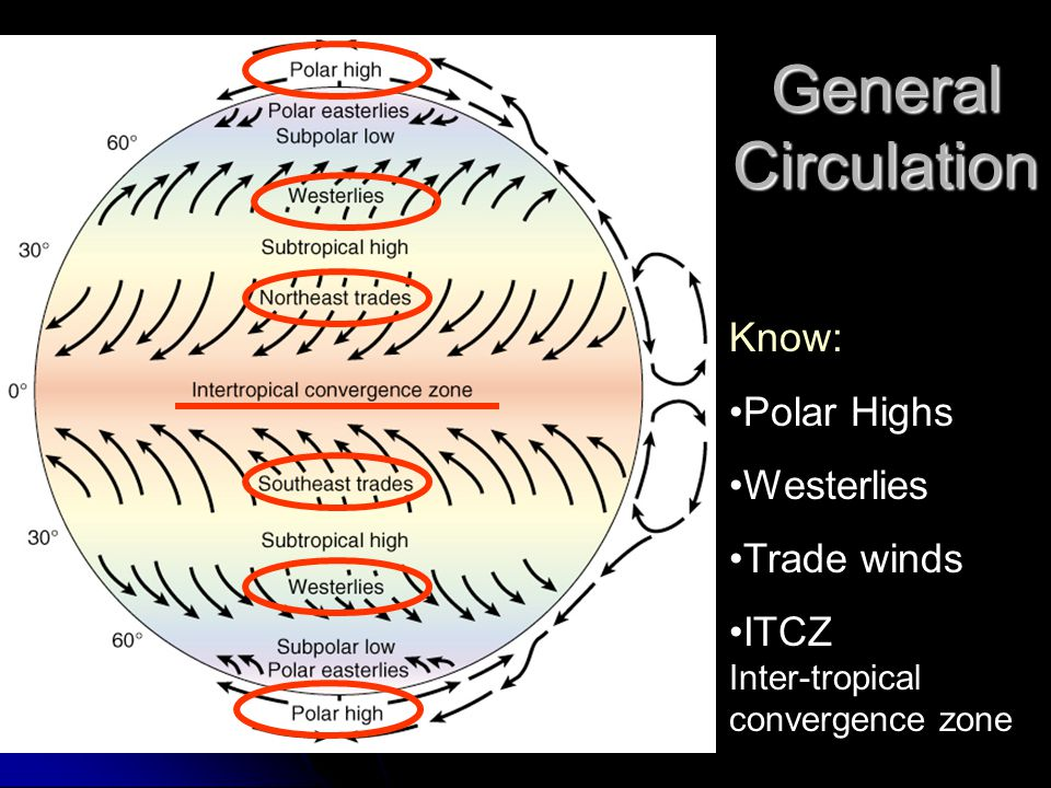 General Circulation Know: Polar Highs Westerlies Trade winds