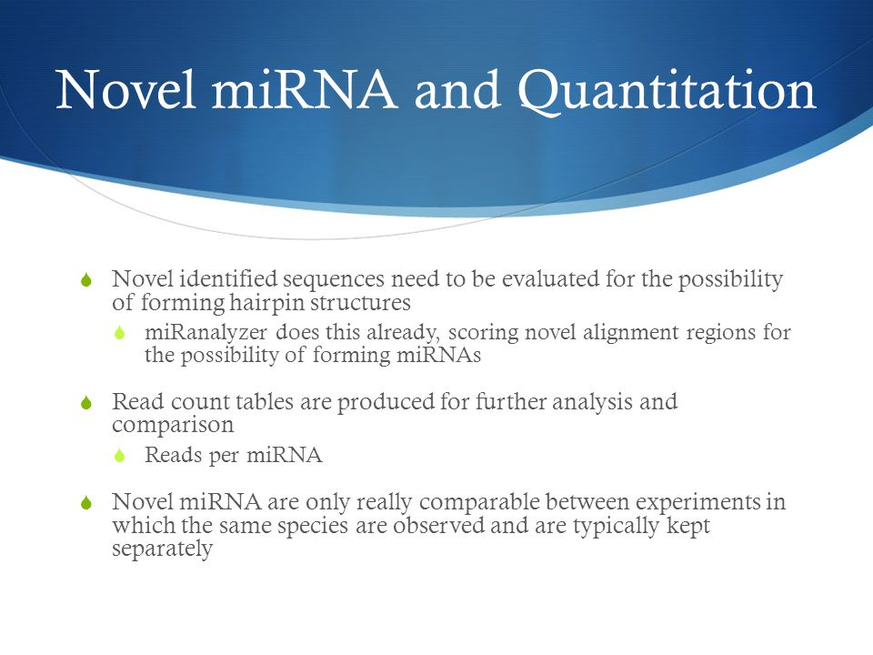 Novel miRNA and Quantitation