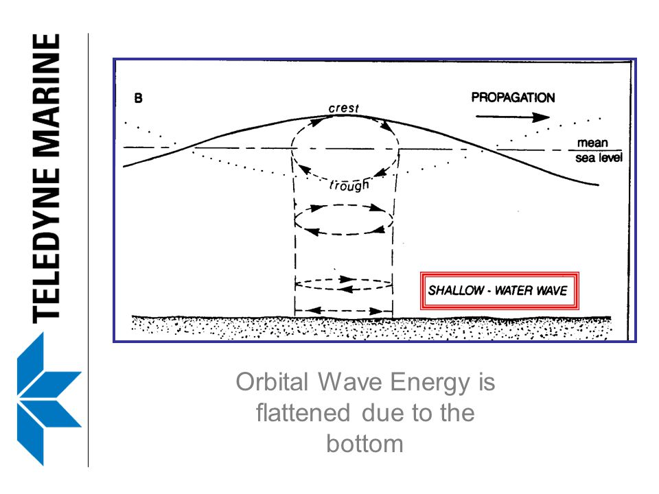 Orbital Wave Energy is flattened due to the bottom