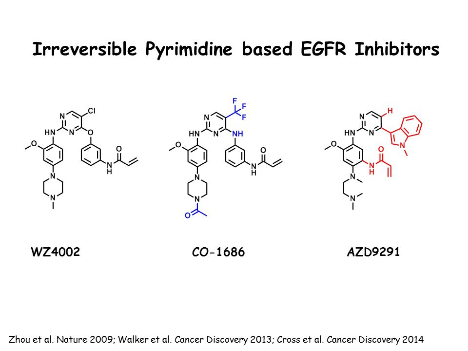 Irreversible Pyrimidine based EGFR Inhibitors