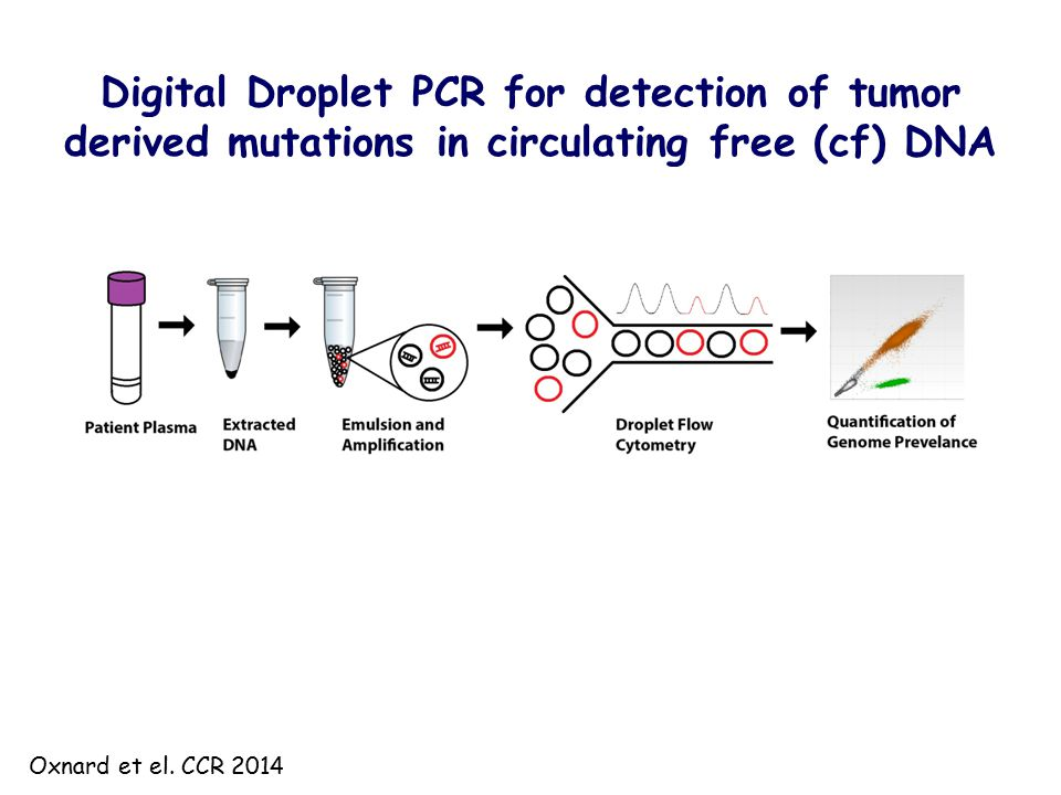 Digital Droplet PCR for detection of tumor derived mutations in circulating free (cf) DNA