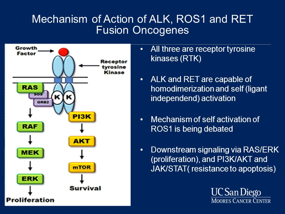 Mechanism of Action of ALK, ROS1 and RET Fusion Oncogenes