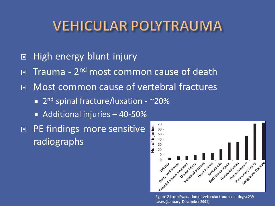 VEHICULAR POLYTRAUMA High energy blunt injury