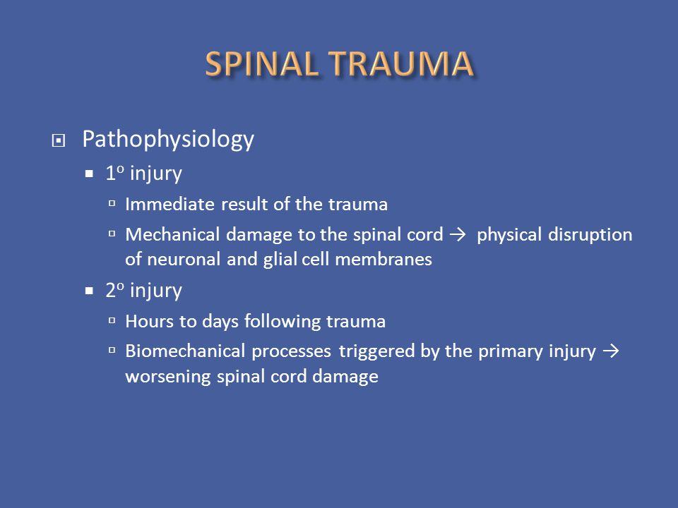 SPINAL TRAUMA Pathophysiology 1o injury 2o injury