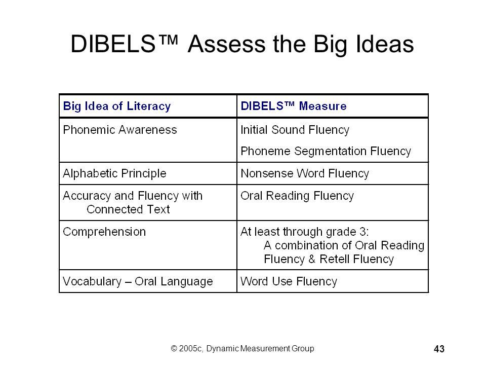 DIBELS™ Assess the Big Ideas