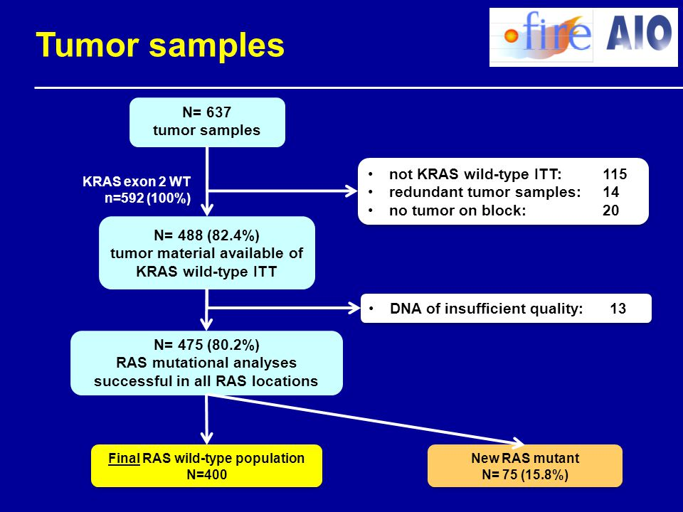 Tumor samples N= 637 tumor samples not KRAS wild-type ITT: 115