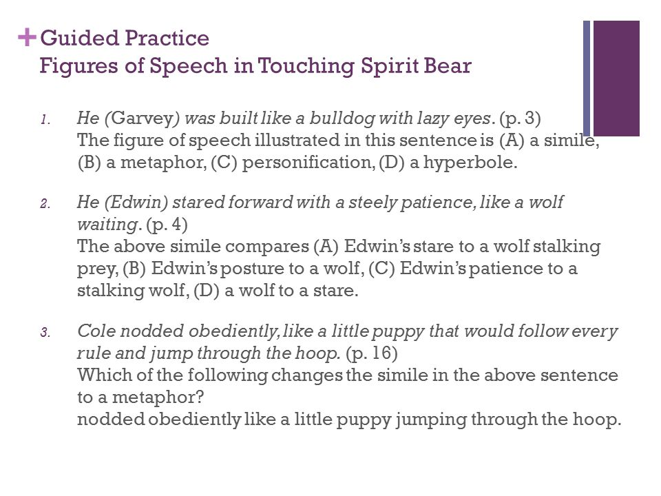 Guided Practice Figures of Speech in Touching Spirit Bear