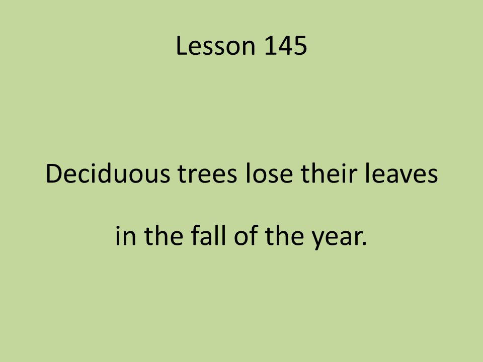Deciduous trees lose their leaves in the fall of the year.