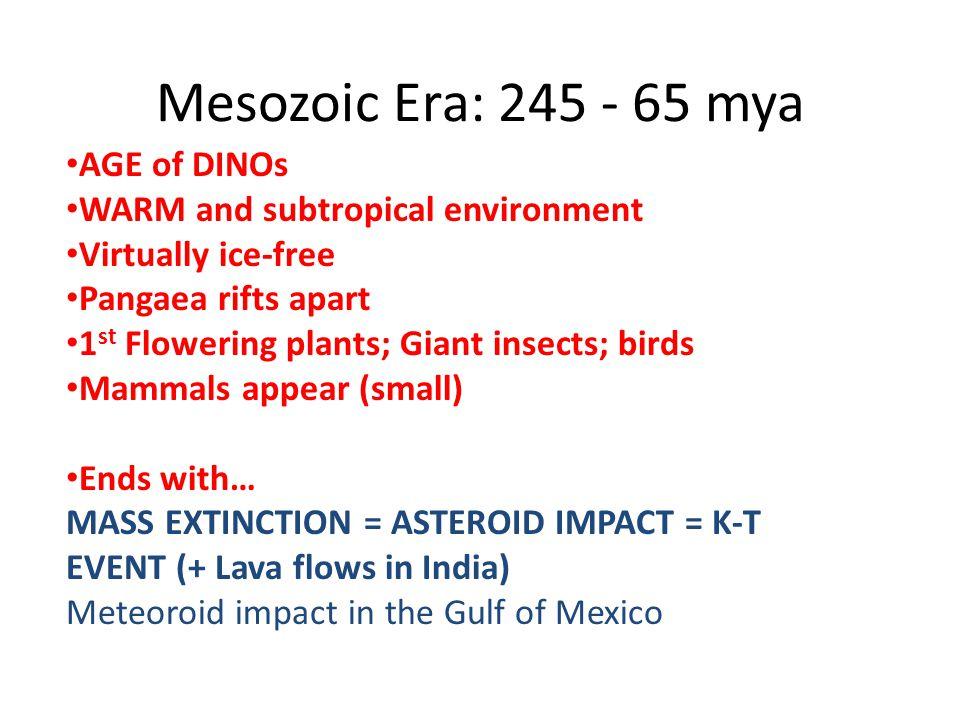 Mesozoic Era: 245 - 65 mya AGE of DINOs