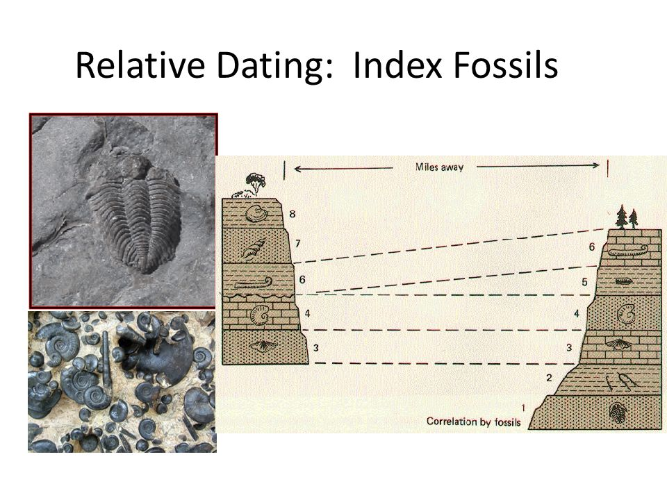 Carbon Radiometric Dating - CSI
