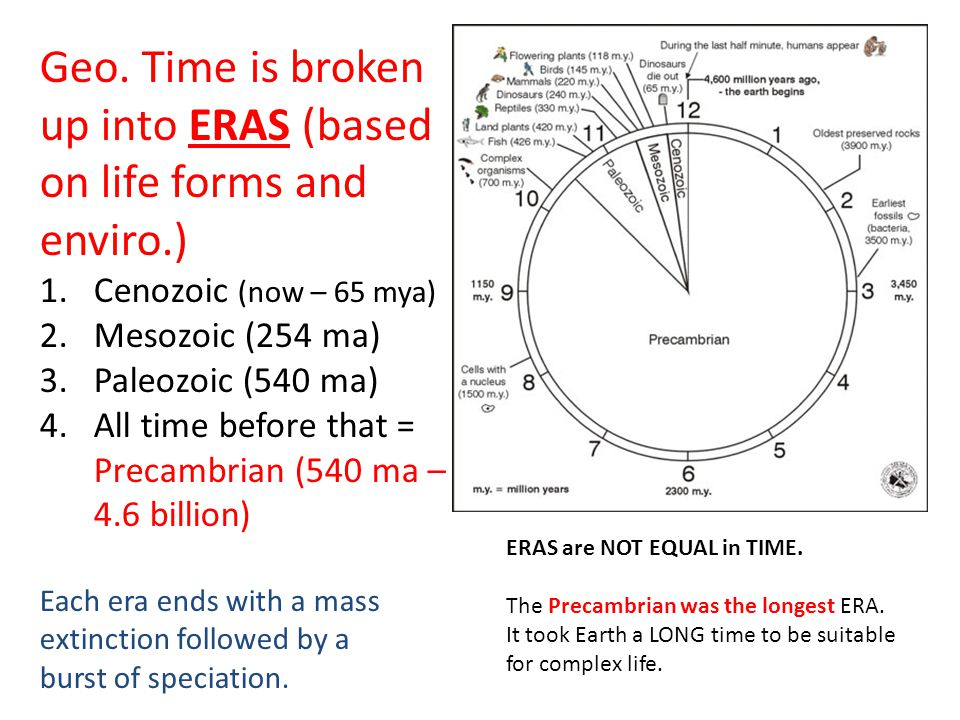 Geo. Time is broken up into ERAS (based on life forms and enviro.)