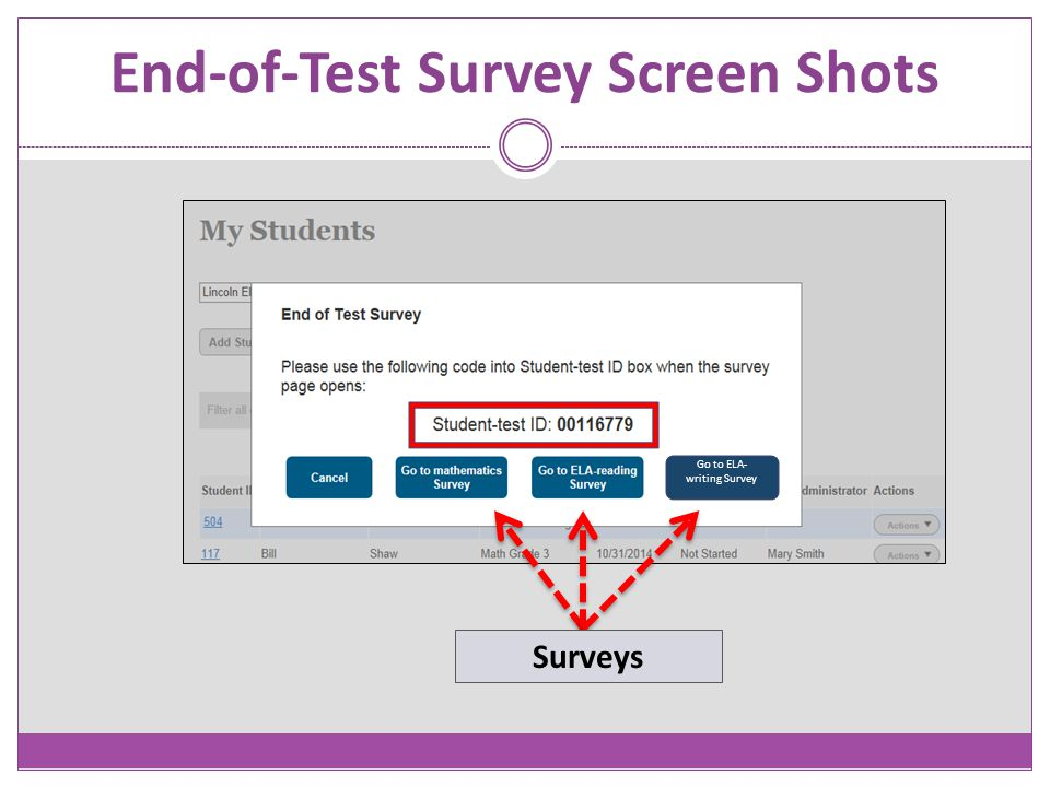 End-of-Test Survey Screen Shots