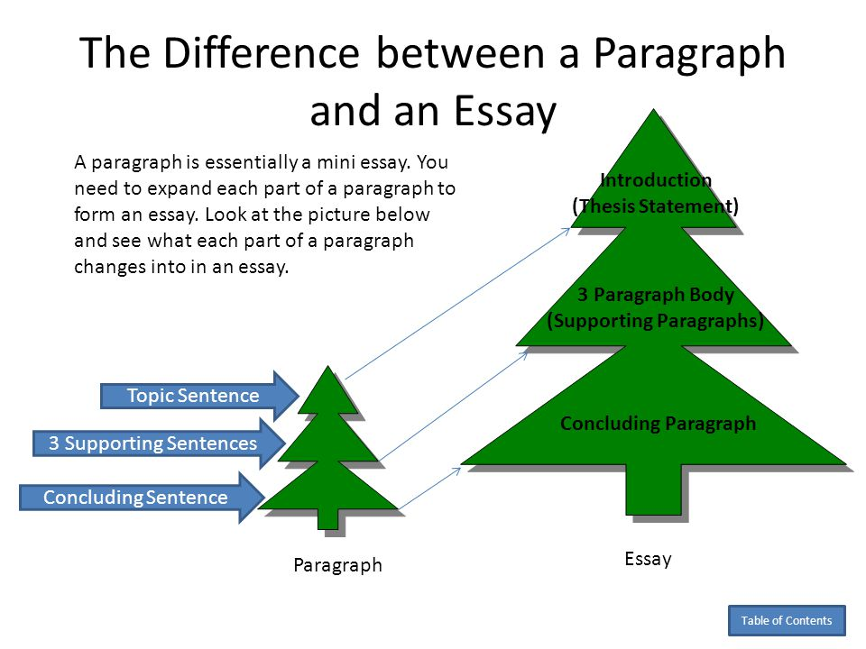what percentage of an essay should the introduction be Learn how to write a strong introduction and conclusion, including what information to include and what information to leave out of your essay.