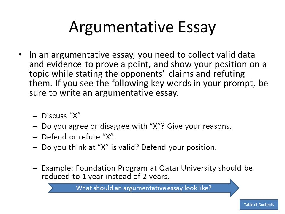 Define argumentative essay
