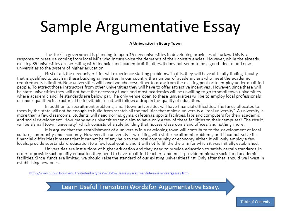 Example Of Good Argumentative Essay