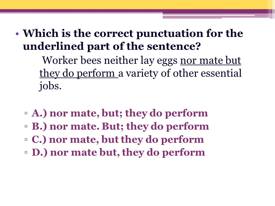 Which is the correct punctuation for the underlined part of the sentence