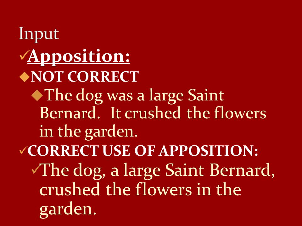 Input Apposition: NOT CORRECT. The dog was a large Saint Bernard. It crushed the flowers in the garden.
