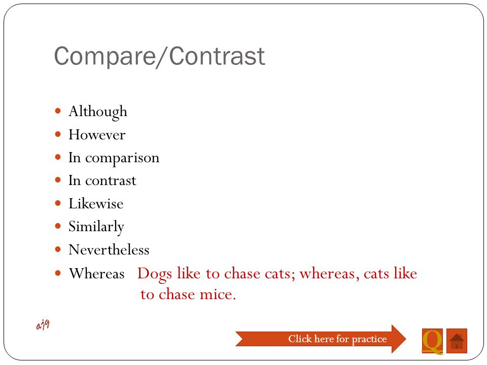 compare and contrast essay cats and dog