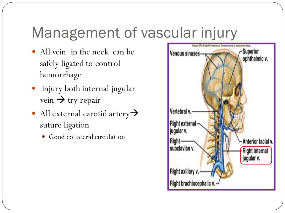 Management of vascular injury