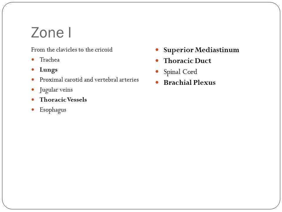 Zone I Superior Mediastinum Thoracic Duct Spinal Cord Brachial Plexus