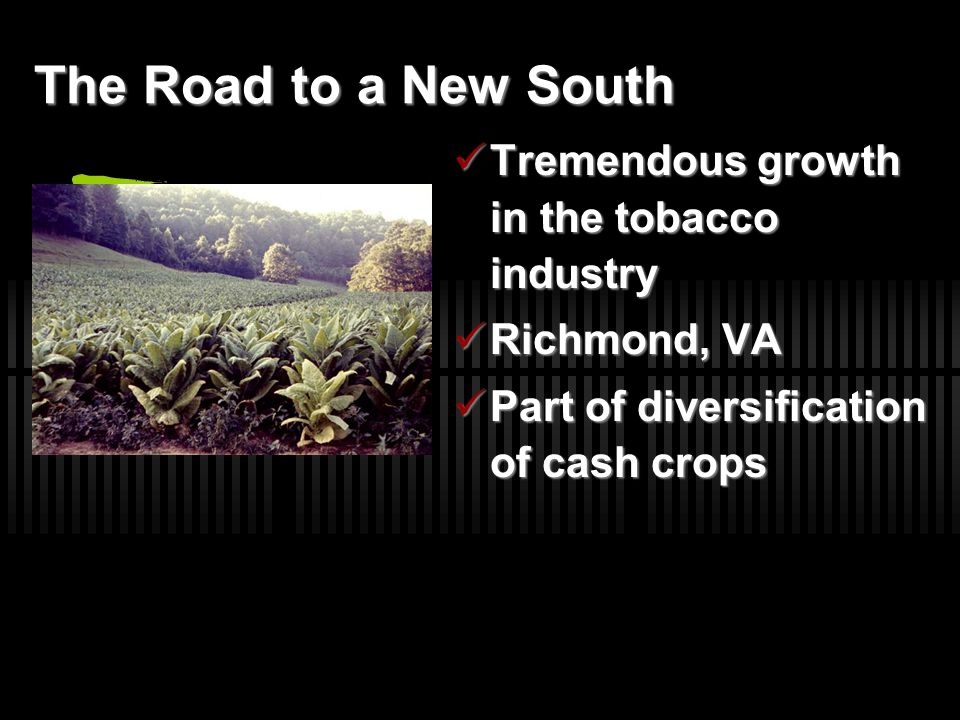 The Road to a New South Tremendous growth in the tobacco industry