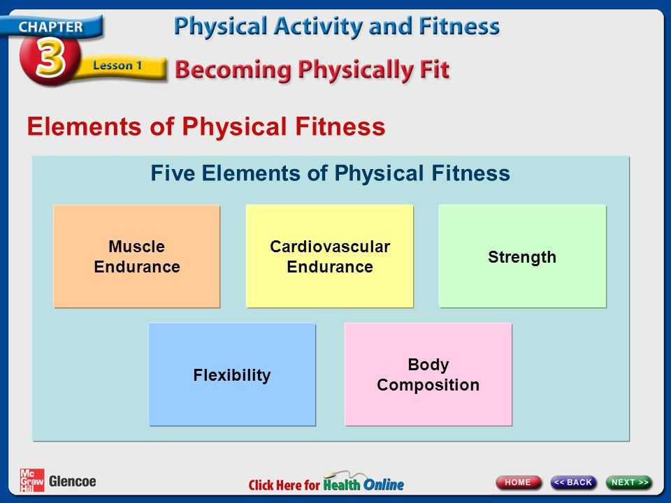 Elements of Physical Fitness