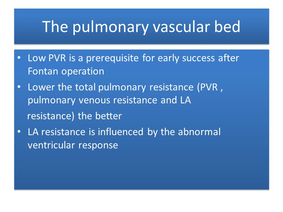 The pulmonary vascular bed
