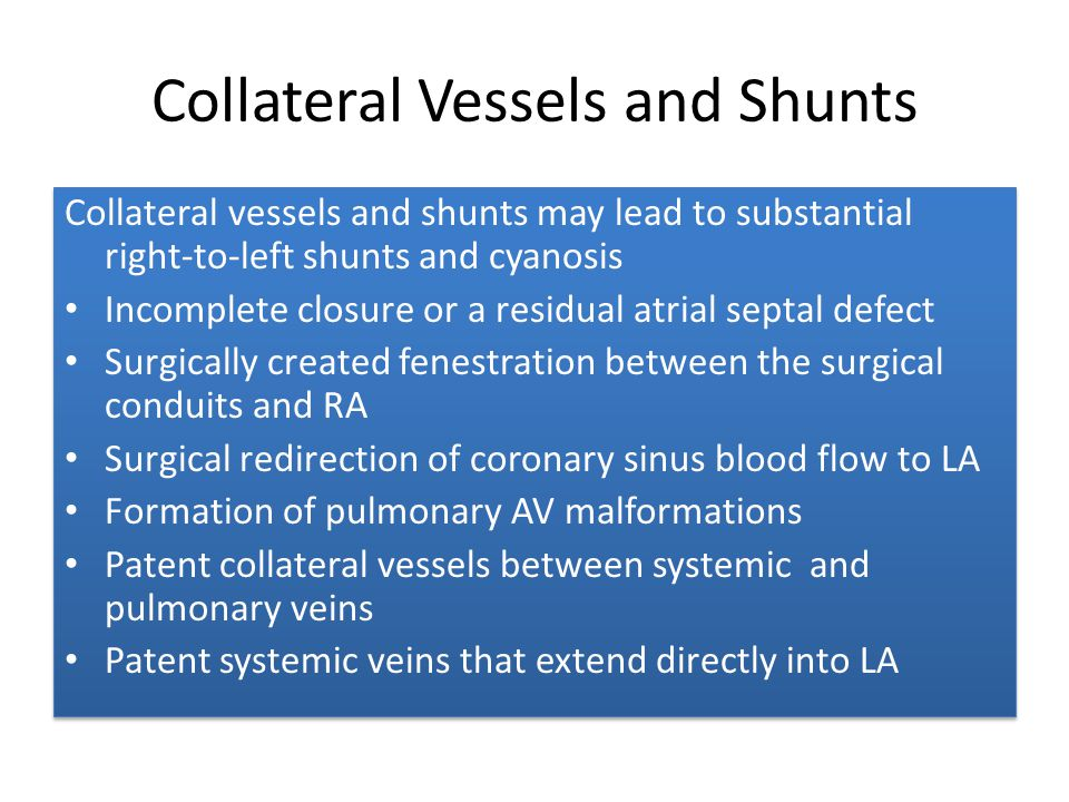 Collateral Vessels and Shunts