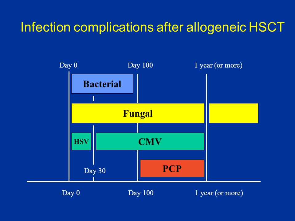 Infection complications after allogeneic HSCT