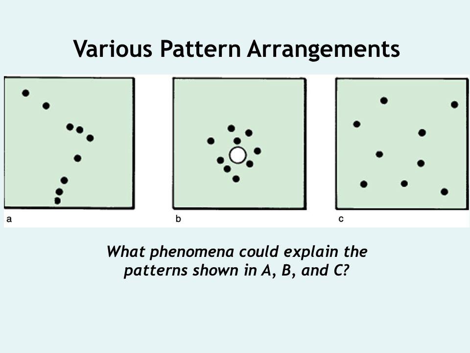 Various Pattern Arrangements