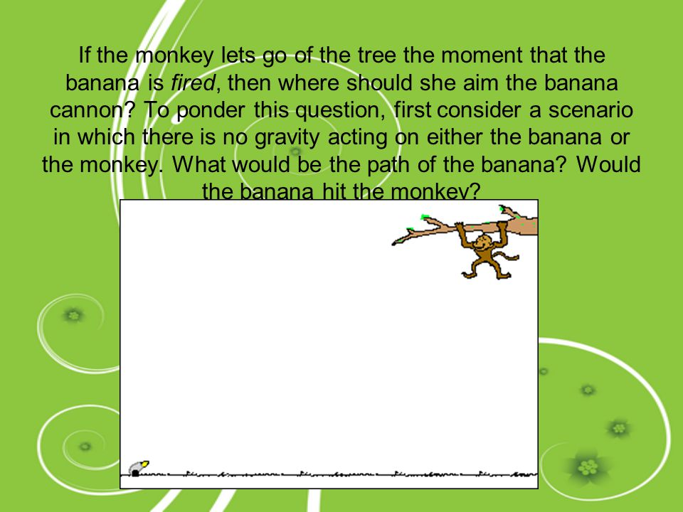 If the monkey lets go of the tree the moment that the banana is fired, then where should she aim the banana cannon.